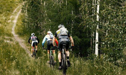 Mountainbiken op de Veluwe - Suitelodges